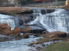 Greenville SC-- waterfall in downtown! Miss this place!
