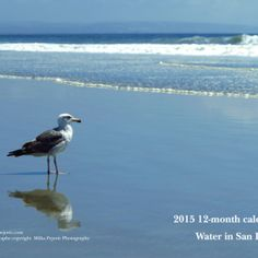 My 2015 water calendar is now available for sale. View all photos of water at http://milkapejovic.com/buy-photos/2015-photo-calendar/2015-water-in-san-diego-calendar/, including the Pacific ocean, raindrops on plants and flowers, and animals in ponds. Buy this 2015 photo calendar about water in San Diego at http://www.zazzle.com/2015_calendar_water_in_san_diego-158103777463807881?rf=238605573727313755.