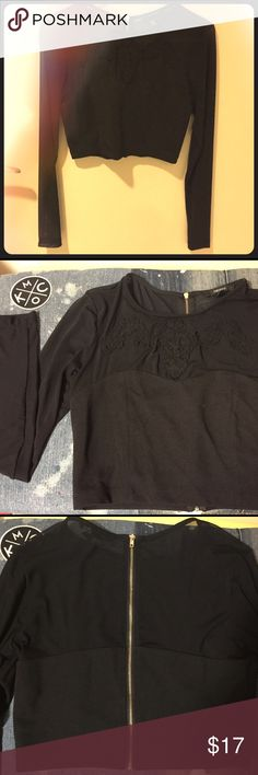 Black Sheer Crop Top Black long-sleeved sheer crop top, size medium. Worn once (pictured), in great condition. Gold zipper that zips all up the back Forever 21 Tops Crop Tops