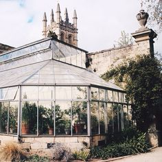 greenhouse dreamhouse (at The Oxford Botanic Garden)