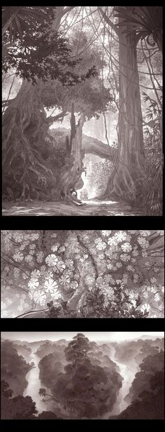 Environment Sketch, Environment Design, Fantasy Forest, Forest Art, Cartoon Background, Animation Background, Landscape Concept, Fantasy Landscape, Landscape Drawings