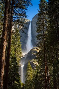 Hike in Yosemite one more time. Upper and Lower Yosemite Falls. Yosemite Falls is the highest measured waterfall in North America. Located in Yosemite National Park in the . Beautiful Waterfalls, Beautiful Landscapes, Dream Vacations, Vacation Spots, Vacation Ideas, Places To Travel, Places To See, Travel Pics, Yosemite Falls