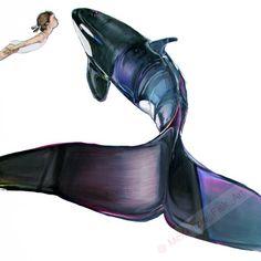 Killer whale illustration - Modern wall art surrealism print living room decor nursery decor - orca illustration - painting by McKenzie Fisk Orca Tattoo, Whale Tattoos, Body Art Tattoos, Arte Orca, Orca Art, Killer Whale Tattoo, Killer Whales, Whale Illustration, Graphic Illustration