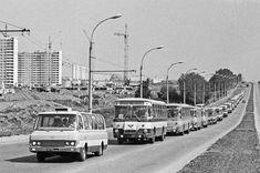 Автобусы с детьми направляются в подмосковный пионерский лагерь. 3 июня 1981 года. Фото Валентина Соболева /Фотохроника ТАСС/