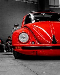 Van Vw, Motorcycle Gps, Volkswagen Beetle, Gas Monkey, Nissan Patrol, Camper Renovation, Vw Cars, Vw Beetles, Motor Car