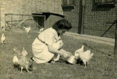 Vintage - farm wife and her hens
