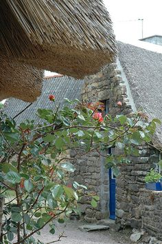 Detail - Thatch Roof