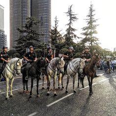 Policía montada a caballo para el partido del Madrid - Manchester City. . . . . #championsleague #partido #futbol #football #realmadrid #manchester #manchestercity #madrid #caballo #horse #policia #police #ligadecampeones #top #likealways #likeit #england #igersmadrid #champion #goodluck #goal #gol #bernabeustadium #santiagobernabeu #followalways #TFLers #travel #escapada #deporte  #visitmadrid by life.love.travels
