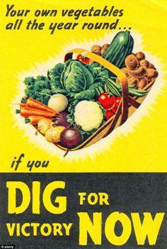 World War 2 Poster Gardens//Allotments Dig for Plenty Vintage Reprint A4
