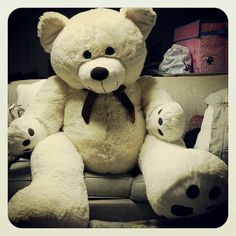 My 5 feet teddy bear!