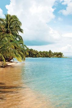 Isla Bastimentos, Panamá