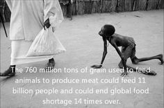 living vegan doesn't just help animals, it could end world hunger for good.
