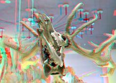 https://flic.kr/p/foRwJT   Naturalis 3D   edelhert Skull anaglyph  red/cyan