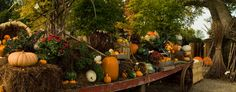 great fall display for the shop