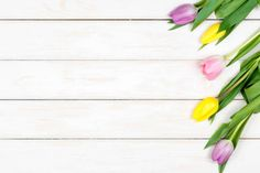 bunch of colored tulips lying on a white wooden background