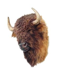 Buffalo Bison Head Wall Mount with Faux Fur
