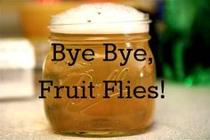 How to Get Rid of Fruit Flies: First, take a wide mouth jar and fill it 1/2 — 3/4 of the way full with apple cider vinegar. (No other vinegar will work, btw. It has to be apple cider vinegar.) Add a few drops of dish soap, then fill the rest of the jar with water until the bubbles reach the rim of the jar. Finally, in the words of my lovely friend…. WATCH THE CARNAGE. If you leave that jar alone for a few hours, the fruit flies will come. TRUST ME. THEY WILL COME. Check it: