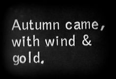 Life in Black & White | For more autumn awesomeness check out my What I Like About Fall board. Thanks.