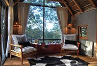 Phantom Forest Knysna is a luxury eco reserve destination in afromontane forest along South Africa's coveted Garden Route. Knysna, Cape Town, Outdoor Furniture, Outdoor Decor, To Go, Luxury, Bed, Places, Home Decor