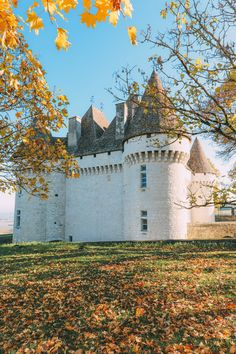 French Wine, French Castles And Delicious French Food - A Trip To French Wine Country (52)