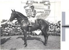 Nashua 1955