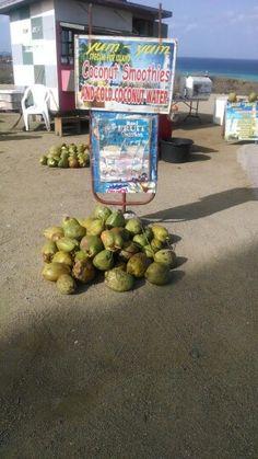 Best coconut smoothie Carolina lighthouse -Aruba