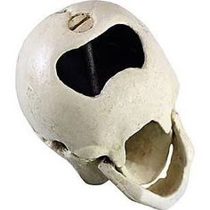 Design Toscano Skeleton Skull Pop Your Top Cast Iron Bottle Opener (Set of 3)