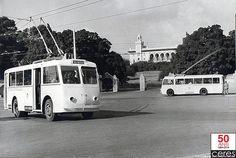 Le trolleybus à Tunis-Pasteur 1960. Tunis a eu très tôt son réseau de transport électrifié. Le célèbre TGM est électrifié dès 1908, et en 1914, la CTT (Compagnie des transports de Tunis) avait mis en exploitation une dizaine de lignes de tramways électriques, desservant les principaux faubourgs.
