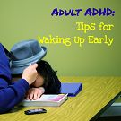 Adult ADHD: Waking up Early by Nikki Schwartz, LPC at Oaktree Counseling