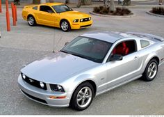 2005 ford mustang gt              My new car !!! well mine looks a little different but I am so happy !!!
