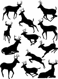 elk black and white silhouette vector