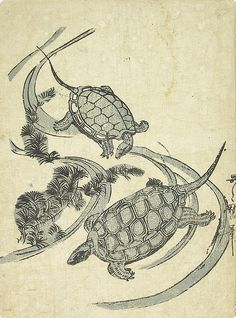 Two Turtles Swimming - Stuart Jackson Gallery Japan Illustration, Nature Illustration, Japanese Art Prints, Japanese Drawings, Turtle Tattoo Designs, Turtle Tattoos, Tortoise Tattoo, Dragon Tattoo Art, Japanese Animals