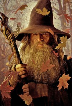 This is the wizard, Gandalf.