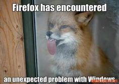 Firefox – Problem mit Windows   lustiges auf Spass.net