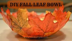 My daughter and I saw this beautiful <strong> DIY Fall Leaf Bowl </strong> over on <em class=short_underline> Hello Lucky </em> and just had to make it! It turned out so pretty! All you need for materials is loose leaves or leaf garland that you detach, <em class=short_underline> Mod Podge </em> (matte finish), a foam brush, a Balloon, and a mixing bowl. We went to the Dollar Store and found a bag of 50 Fall leaves and a really big bag of foam brushes (for a $1.00 each!) W...