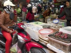 Snapshots from Vietnam: Wet Market Tour in Hanoi