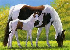 PINTO BEAUTIES Horse Drawings, Animal Drawings, Cute Drawings, Beautiful Horse Pictures, Beautiful Horses, Anime Animals, Animals And Pets, Arte Equina, Artist Painting
