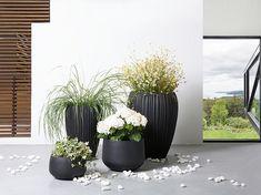 Ga heerlijk voorbereid de lente in met deze prachtige plantenbakken! Check voor meer inspiratie onze website.