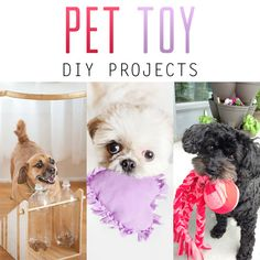 Pet Toy DIY Projects - The Cottage Market