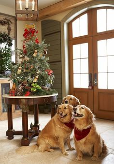 OUR CHRISTMAS TREE <> Christmas 4U from Marjan from the Netherlands