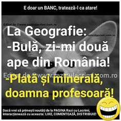 Plată și minerală Anime Fanfiction, Grumpy Cat, Funny Moments, Funny Photos, Funny Texts, Humor, Memes, Pictures, Geography