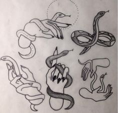 available flash (or can easily customize you a special snake) - some spots in the first week of Nov left.