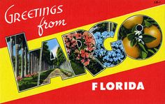Greetings from Largo, Florida - Large Letter Postcard Vintage Florida, Old Florida, Florida Oranges, Hanging Posters, Vintage Art Prints, Large Letters, Kids Events, Photo Postcards, Vintage Images
