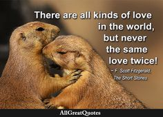There are all kinds of love in the world, but never the same love twice. F. Scott Fitzgerald, The Short Stories  http://bit.ly/2ceEPaT