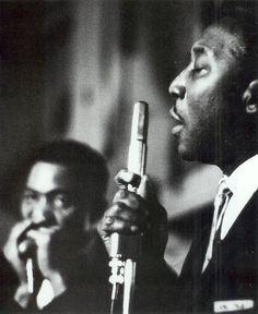 Muddy Waters (background: Jimmy Cotton)