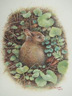 「春の道端」  続木唯道  水彩(B5) 2014年  とある高原に向かう途中、車の前を小動物が横切った。 動きのぎこちない幼い野うさぎだった。  道端の草むらにじーっと佇んでいて、そーっと近寄っても逃げる気配がない。親うさぎなら数メートル接近することも困難であろうが、まだ逃げる術(すべ)を身につけていない様子の幼うさぎ。  その目だけは大きく見開き警戒心を表していた。 ふと我に帰ったように、お尻をぴょこぴょこと振りながら茂みへと姿を消していった。 五月の気持ちホッコリな思い出となった。