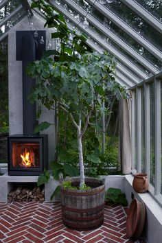 Inspirierende Ideen pro dies Treibhaus Inspirational ideas for this greenhouse Outdoor Greenhouse, Cheap Greenhouse, Greenhouse Interiors, Backyard Greenhouse, Greenhouse Plans, Greenhouse Wedding, Homemade Greenhouse, Outdoor Rooms, Outdoor Living