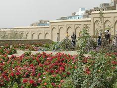 Gardens within Bagh-e-Babur.  Kabul, Afghanistan. An AKTC Project