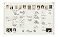 Family Tree - Pedigree Chart