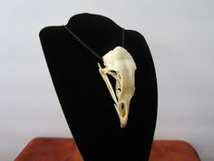 Bone Necklace Bird Real Bone Gothic Tribal Pagan Bone Jewelry Animal Bone Jewelry Real Bone Jewelry Silver Bone Jewelry Fang Gothic